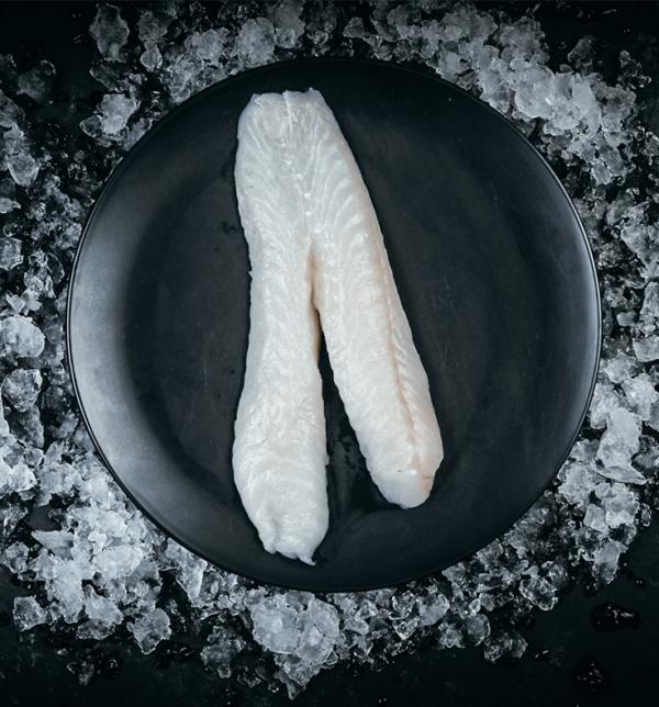 Monkfish fresh fillet
