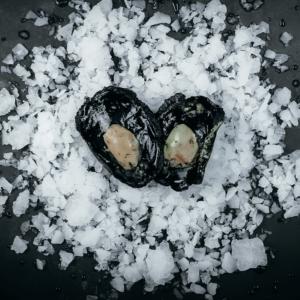 Frozen Paua Meat on ice